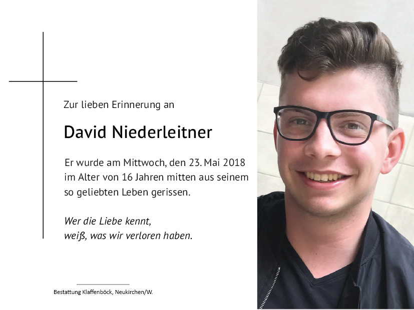David  Niederleitner